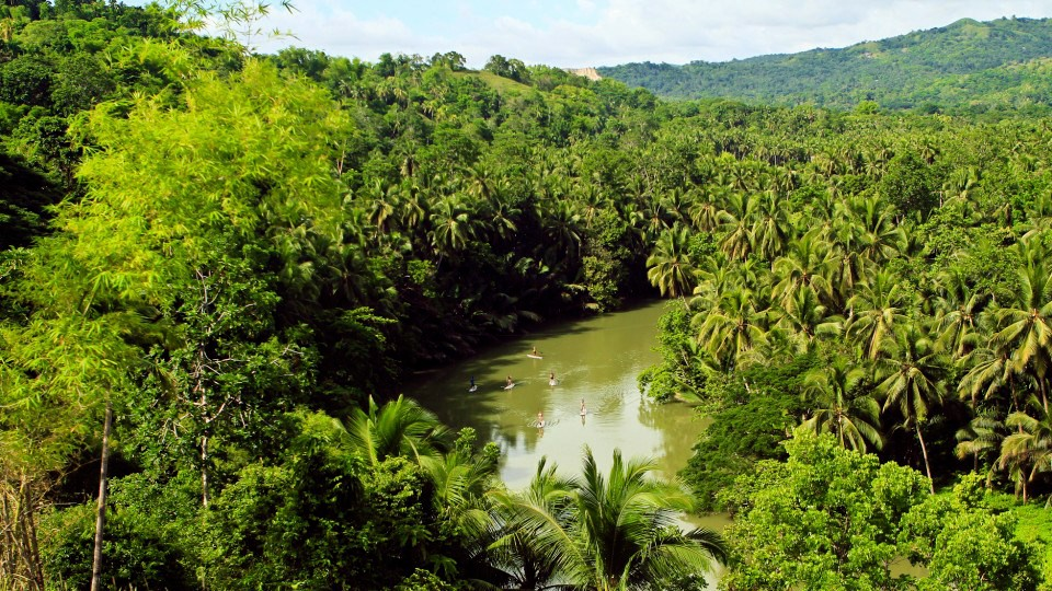Cambuhat River Cruise + Oyster farm and Village Tour,Bohol,Tours